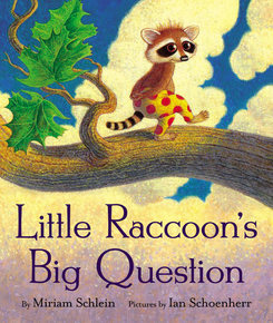 little-raccoons-big-question