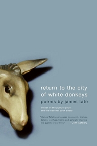 return-to-the-city-of-white-donkeys