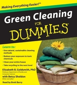 green-cleaning-for-dummies