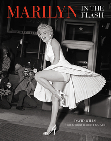 marilyn-public-exposures